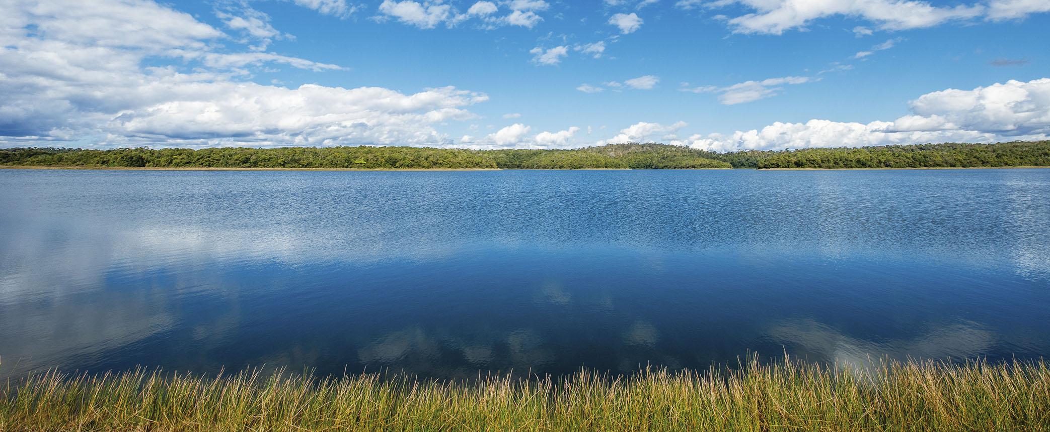 PARQUE ESTADUAL DO RIO DOCE: Reserva da Biosfera, Sitio Ramsar e Hotspot