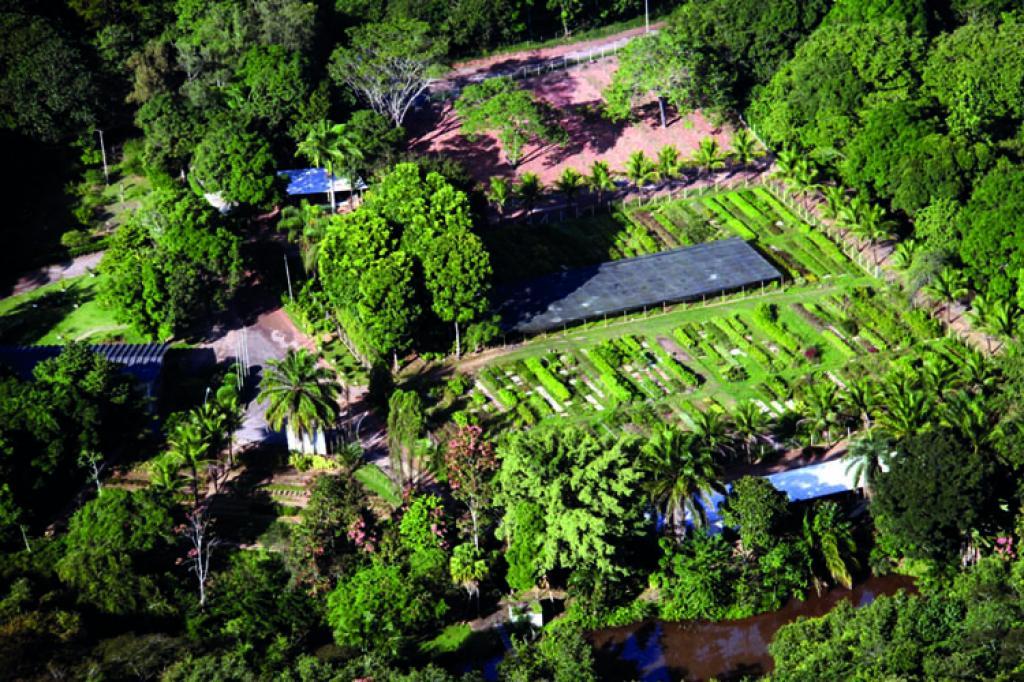 Reconhecimento ambiental na RPPN Usipa